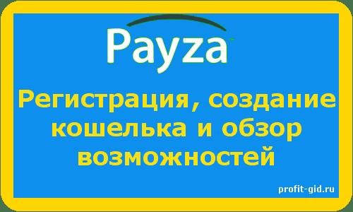Payza - регистрация, создание кошелька и обзор возможностей